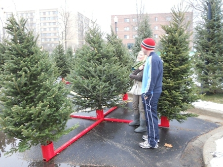 Christmas Tree Lots.Ideal Property Management 2018 Christmas Tree Lots